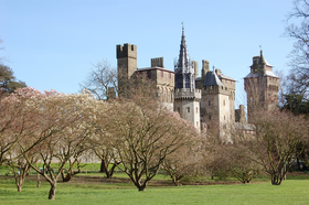 A950 cardiff castle from bute park article