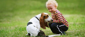 Img article things to consider before getting a dog for your family article