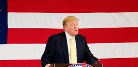 Trump article