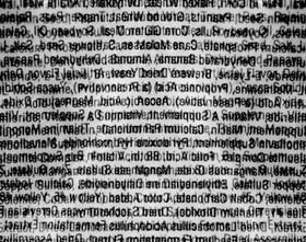 3020250442 242bc1ac67 b article