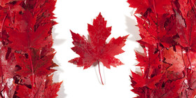 O canada flag facebook article