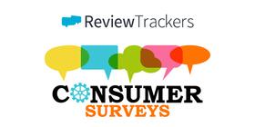 Consumer surveys online reviews article