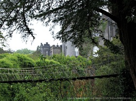 Birr castle suspension bridge article