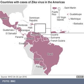Viagem zika article