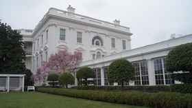 Whitehouse article