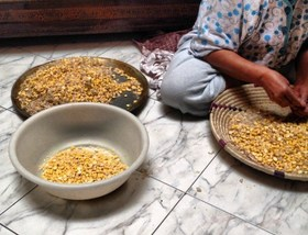 Cleaning chickpeas courtesy marocmama article
