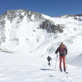 Paul hamilton skihr article