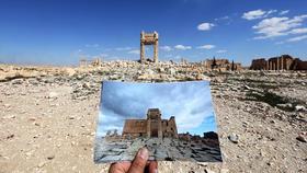 Palmyra article