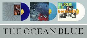 Ocean blue vinyl article