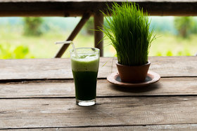 Wheatgrass article