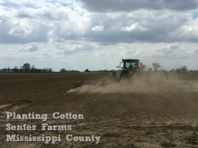 Spring planting senter farms article
