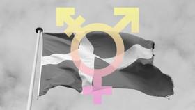 Transgender denmark 620x349 article