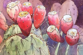 Prickly pear cactus %28 opuntia sp.%29  saguaro national park  az by pamela shelksohn  flora of the national parks exhibit  u.s. botanic garden article