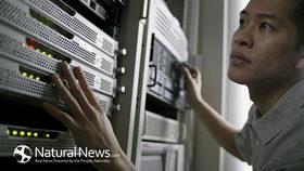 Man check computer server room data website information 650x article