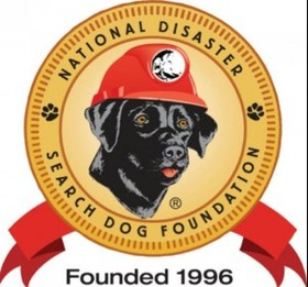 Search dog logo article