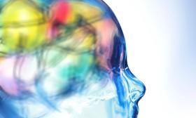 How marijuana affects the brain article