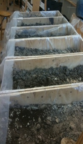 Biosolids amended soilboxes article