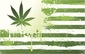 Wa state weed flag article