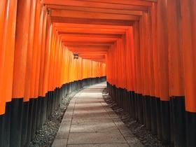 Orange road article