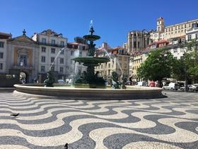 Lisbon 5953 article