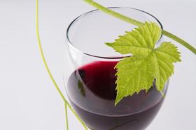 Wine n leaf article