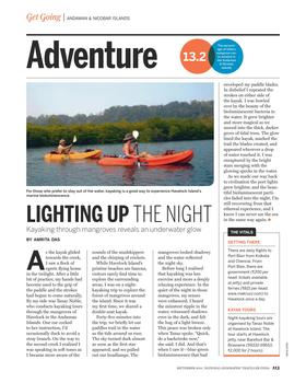 Lighting up the night  national geographic traveller india sept 2014 article