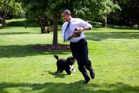 Barack obama quora article