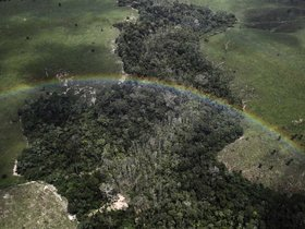 Amazon forest aerial rainbow brazil article