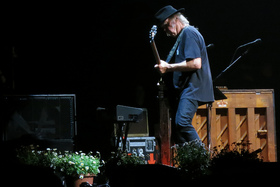 Neilyoung2medium article