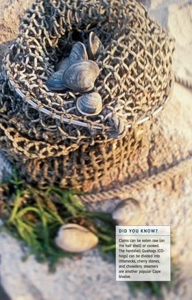 Fodors clam shacks article