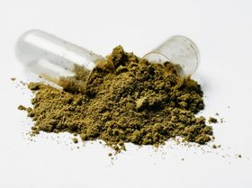 Kratomta 20150304 zan s70 058 1024x765 article