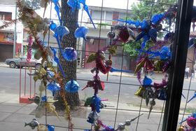 Ornamentsbuenosaires article