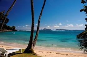 Beach bequia hotel beach article