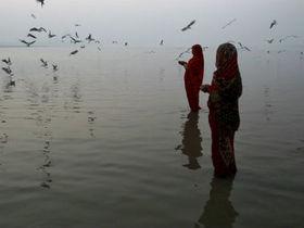 Ganga article