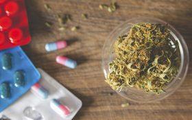 Cannabis antidepressants 1280x800 article