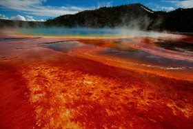 Yellowstone feature article