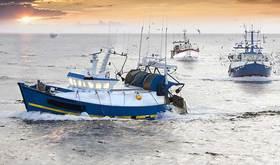 Fishing topnteaser 0 article