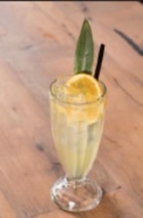 Im citrus shrub article