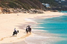 Horseback riding beaches article