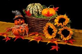 Autumn black dark decoration 41200 article