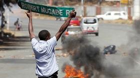 Zimbabwe protest  article