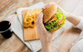 0 main bestfastfood syda productions shutterstock 288575594 793x496 article
