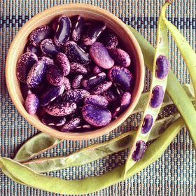 Scarlet runners beans have a message for us can you see it  beans  purple  farmersmarket  humboldtcounty  surprise article