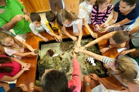 Junior naturalists biscayne nature center db 4 1200x799 article