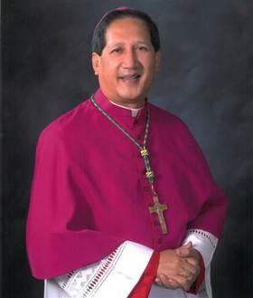 Bishopsolis article