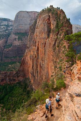 Angels landing hikers article