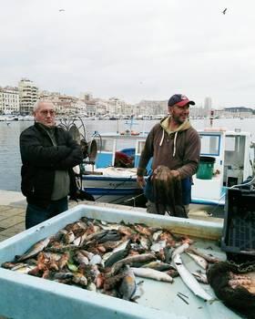 Marche aux poissons marseille vieux port article