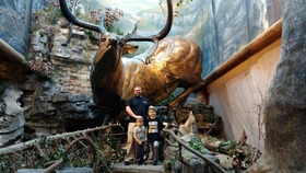 Bass pro shops elk statue springfield mo article