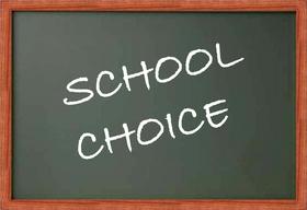 School choice article