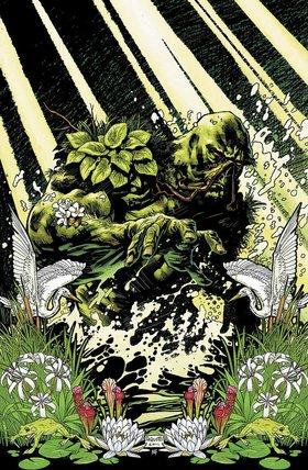 Swamp article